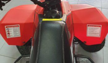 Quad FX 250 con 4 marce – 2X4 Full Screen